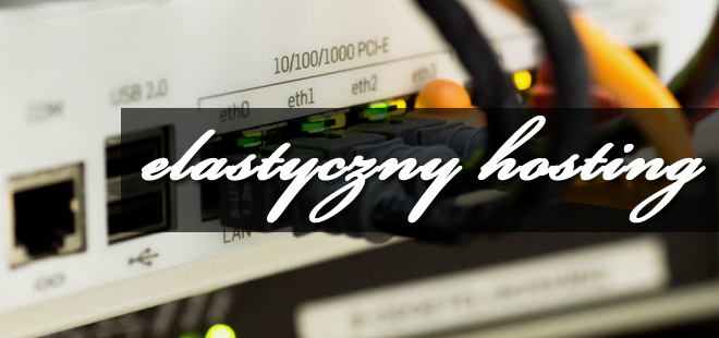 Elastyczny web hosting odpowiedzią na zmieniające się potrzeby klientów